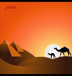 egypt sunset vector image vector image
