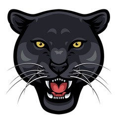 angry panther face vector image