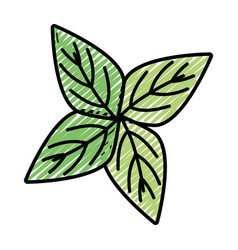 Beauty ecology leaves to decoration design vector