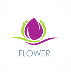 beauty flower spa logo vector image