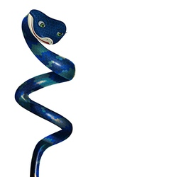 Blue snake on a white background vector image