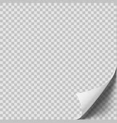 white curled sheet of paper with shadow vector image
