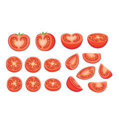 tomatoes collection isolated vector image vector image