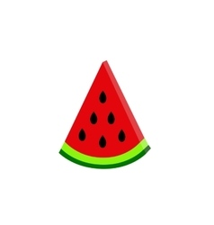 water-melon on white background flat vector image