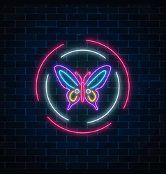 purple batterfly glowing neon sign in round vector image