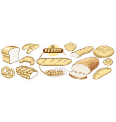 bakery food item bread baguette in wheat circle vector image