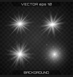 bright star light vector image