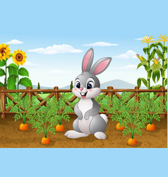 cartoon rabbit with carrot plant in the garden vector image