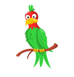 colorful parrot sitting on branch isolated on vector image