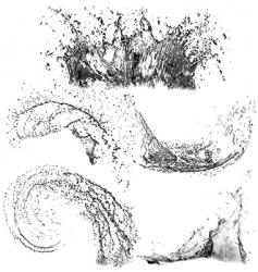 splashes water vector image