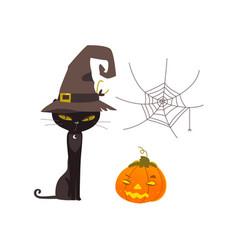halloween objects - cat spider web pumpkin vector image vector image