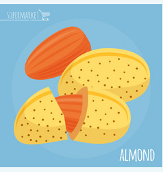 almond flat design icon vector image