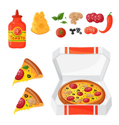 hot fresh pizza ingredients icons vector image vector image