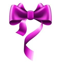 Big violet bow vector image
