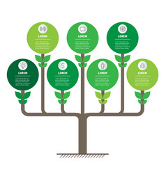 development and growth eco business tree vector image