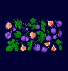 figs juicy set fruit texture green leaf vector image