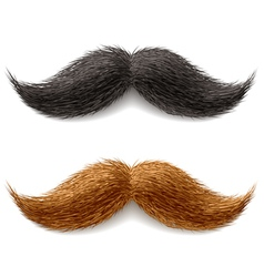 fake mustaches vector image vector image
