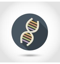 Human DNA flat icon vector image vector image