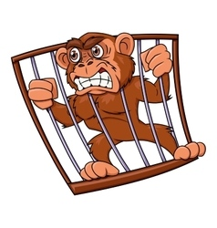 Angry monkey in cage vector image