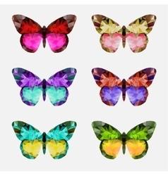 Butterfly multicolor logo vector image