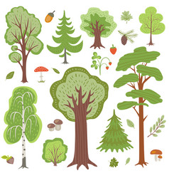 forest trees plants and mushrooms other woodland vector image