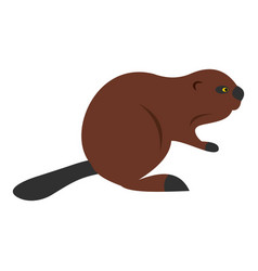 North american beaver icon isolated vector