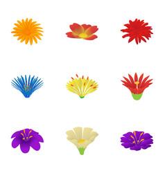 Passiflora icons set cartoon style vector