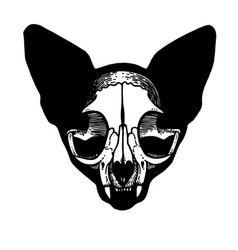 Tattoo skull of a cat vector