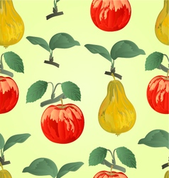 Seamless texture red apple with pear vector image vector image