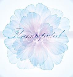 Watercolor floral vintage card vector image