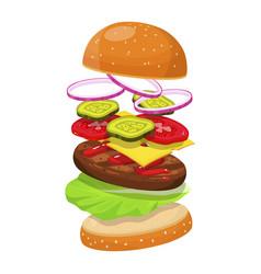 hamburger ingredients image vector image vector image