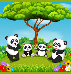 beautiful view with some panda vector image
