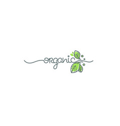 beauty of nature doodle organic leave emblem vector image