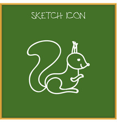 Of zoo symbol on squirrel vector