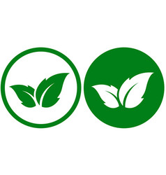 eco icon with leaf vector image vector image