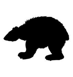 huge polar bear vector image vector image
