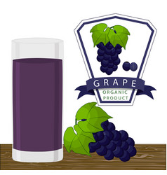 the grape vector image vector image