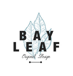 Bay leaf logo original design aromatic culinary vector