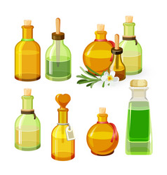 Colourful bottles with aroma oils isolated on vector image