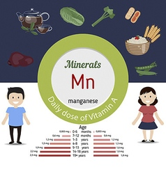 Minerals Mn infographic vector