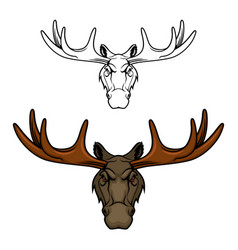 moose or elk head with antlers wild animal icon vector image
