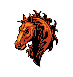 Mustang horse head isolate equestrian sport mascot vector
