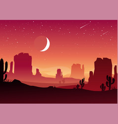 night in mexican desert vector image