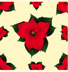 red poinsettia on ivory beige background vector image
