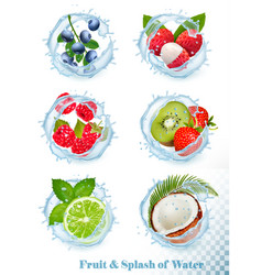 Set different water splashes with fruit and vector
