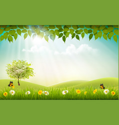 Summer nature background with landscare and sun vector