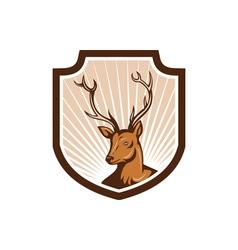 Deer stag buck antler head shield vector