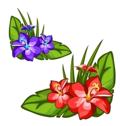 Red and blue beautiful flower on green leaves vector image vector image