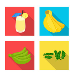 design of natural and vegetarian symbol vector image