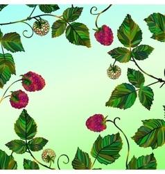 Frame with a raspberry vector
